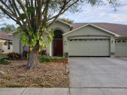 Photo of 8629 Hawbuck Street, TRINITY, FL 34655 (MLS # U8077882)