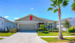 Photo of 11128 Spring Point Circle, RIVERVIEW, FL 33579 (MLS # U8080066)
