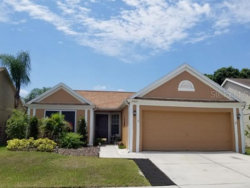 Photo of 12227 Dawn Vista Drive, RIVERVIEW, FL 33578 (MLS # U8085359)