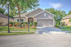 Photo of 11007 Belle Haven Drive, NEW PORT RICHEY, FL 34654 (MLS # U8085872)