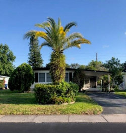 Photo of 228 Independence Avenue, PALM HARBOR, FL 34684 (MLS # U8086268)