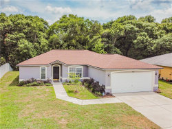 Photo of 24431 Painter Drive, LAND O LAKES, FL 34639 (MLS # U8086439)