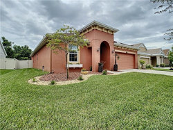 Photo of 21503 Southern Charm Drive, LAND O LAKES, FL 34637 (MLS # U8086679)