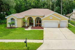 Photo of 5252 Elk Drive, OLDSMAR, FL 34677 (MLS # U8089362)