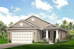 Photo of 7731 Conrad Street, WESLEY CHAPEL, FL 33544 (MLS # U8093257)