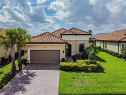 Photo of 11482 Bitola Drive, ODESSA, FL 33556 (MLS # U8093558)