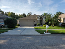 Photo of 25344 Seven Rivers Circle, LAND O LAKES, FL 34639 (MLS # U8101934)