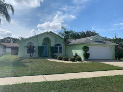 Photo of 8424 Yearling Lane, NEW PORT RICHEY, FL 34653 (MLS # U8102018)