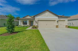 Photo of 19871 Wading Crane Way, LUTZ, FL 33558 (MLS # U8103088)