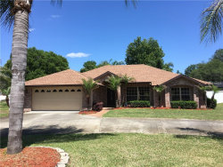 Photo of 2816 Amber Ridge Street, DELTONA, FL 32725 (MLS # V4900277)