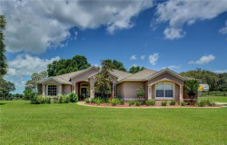 Photo of 1000 Country Ranch Road, DE LEON SPRINGS, FL 32130 (MLS # V4901016)