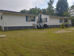 Photo of 24706 Fox Road, ASTOR, FL 32102 (MLS # V4909081)