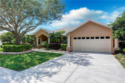 Photo of 19620 Wyndham Lakes Drive, ODESSA, FL 33556 (MLS # W7801435)
