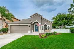Photo of 8141 Lucidul Court, TRINITY, FL 34655 (MLS # W7801509)