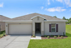 Photo of 10406 Candleberry Woods Lane, GIBSONTON, FL 33534 (MLS # W7802373)