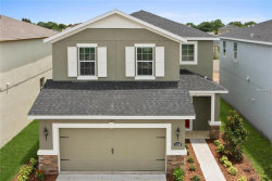 Photo of 14219 Poke Ridge Lane, RIVERVIEW, FL 33579 (MLS # W7804137)
