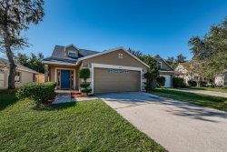 Photo of 8642 Persea Court, TRINITY, FL 34655 (MLS # W7806270)