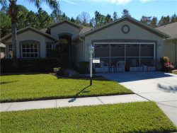 Photo of 12050 Yellow Finch Lane, TRINITY, FL 34655 (MLS # W7806562)