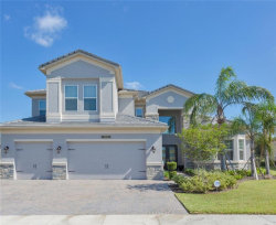 Photo of 2628 Coco Palm Circle, WESLEY CHAPEL, FL 33543 (MLS # W7806830)