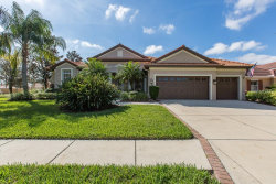 Photo of 1325 El Pardo Drive, TRINITY, FL 34655 (MLS # W7806911)