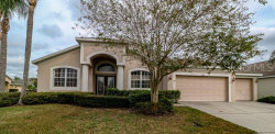 Photo of 1924 Firefern Court, TRINITY, FL 34655 (MLS # W7807093)