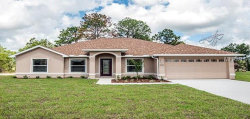 Photo of 12351 Fulmar Road, WEEKI WACHEE, FL 34614 (MLS # W7807420)