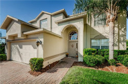 Photo of 1329 Gallberry Court, TRINITY, FL 34655 (MLS # W7807541)