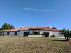 Photo of 7187 River Country Drive, WEEKI WACHEE, FL 34607 (MLS # W7807574)