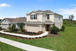 Photo of 11309 Hudson Hills Lane, RIVERVIEW, FL 33579 (MLS # W7807792)