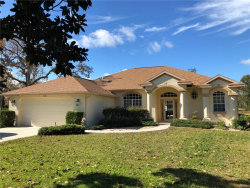 Photo of 9207 Weeping Willow St, BROOKSVILLE, FL 34613 (MLS # W7808421)