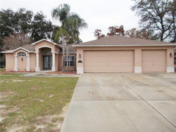 Photo of 5267 Mosquero Road, SPRING HILL, FL 34606 (MLS # W7808542)