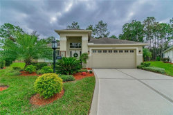 Photo of 18300 Rock Oak Court, HUDSON, FL 34667 (MLS # W7808551)