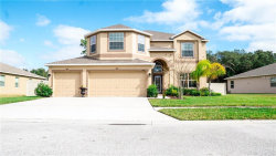 Photo of 13636 Bee Tree Court, HUDSON, FL 34669 (MLS # W7808597)