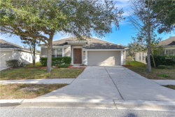 Photo of 14993 Red Bloom Place, BROOKSVILLE, FL 34604 (MLS # W7808630)