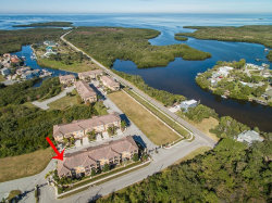 Photo of 6514 Sand Shore Lane, NEW PORT RICHEY, FL 34652 (MLS # W7808669)