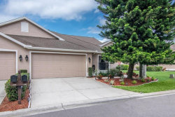Photo of 9633 Sweeping View Drive, NEW PORT RICHEY, FL 34655 (MLS # W7810408)