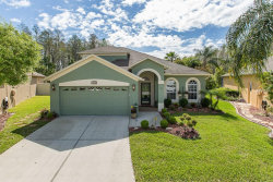 Photo of 3128 Gianna Way, LAND O LAKES, FL 34638 (MLS # W7810758)