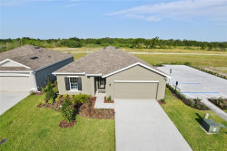 Photo of 10405 Candleberry Woods Lane, GIBSONTON, FL 33534 (MLS # W7811715)