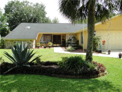 Photo of 7488 River Country Drive, WEEKI WACHEE, FL 34607 (MLS # W7812532)