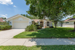 Photo of 1415 Jutland Drive, TRINITY, FL 34655 (MLS # W7812743)