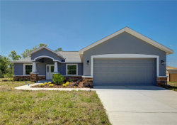 Photo of 11396 Quill Avenue, WEEKI WACHEE, FL 34614 (MLS # W7812774)