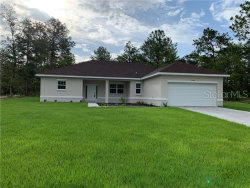 Photo of 8384 Cockatoo Road, WEEKI WACHEE, FL 34613 (MLS # W7813339)