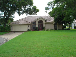 Photo of 9381 Sugar Court, WEEKI WACHEE, FL 34613 (MLS # W7813601)