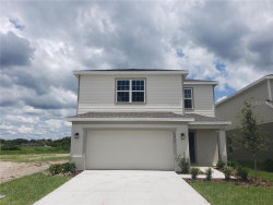 Photo of 10410 Hawks Landing Drive, LAND O LAKES, FL 34638 (MLS # W7813678)