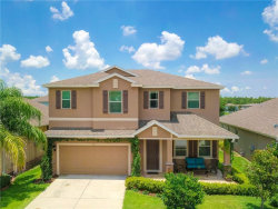 Photo of 1147 Halapa Way, TRINITY, FL 34655 (MLS # W7814145)