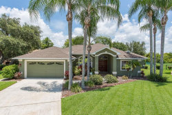 Photo of 8442 Rustlewood Court, TRINITY, FL 34655 (MLS # W7814167)