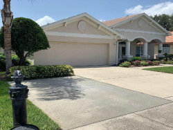 Photo of 9828 Balsaridge Court, TRINITY, FL 34655 (MLS # W7814282)