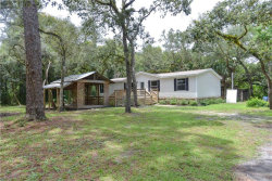 Photo of 14243 Peace Boulevard, SPRING HILL, FL 34610 (MLS # W7814345)