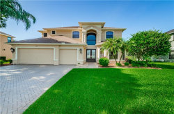 Photo of 12412 Eagles Entry Drive, ODESSA, FL 33556 (MLS # W7814493)