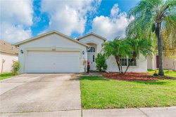 Photo of 24825 Portofino Drive, LUTZ, FL 33559 (MLS # W7814514)